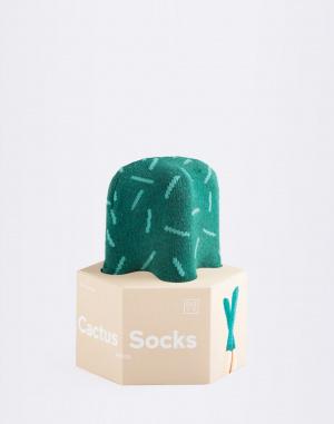 DOIY - Cactus