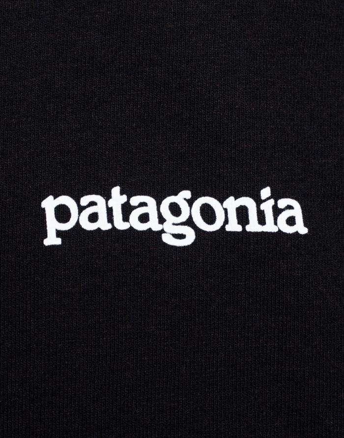 Tričko - Patagonia - Fitz Roy Horizons Responsibili-Tee